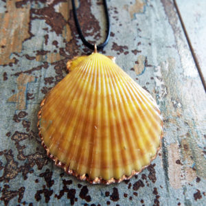 Seashell Pendant Scallop Shell Handmade Necklace Jewelry Beach Sea Ocean Summer Bohemian Mermaid Eco Friendly