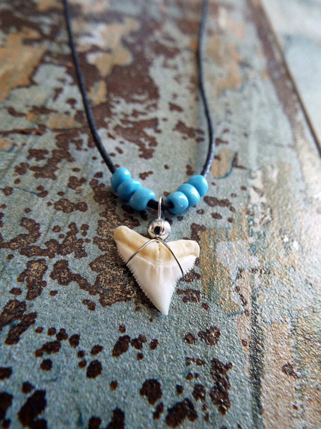 mm jewelry pendants pendant tooth venice silver fossil shark from bull fl beach florida