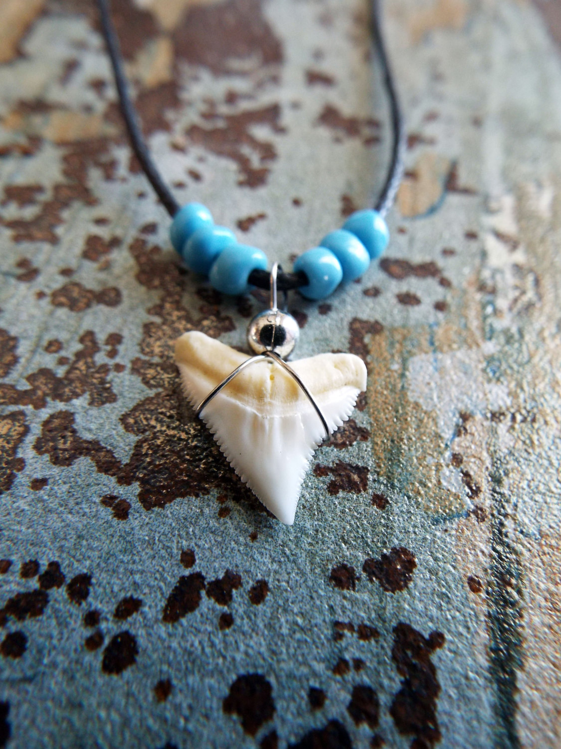 Shark tooth pendant shark tooth necklace pendant handmade real jewelry sea ocean beach tribal aloadofball Gallery
